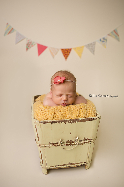 1picture-baby-girl-bucket-with-bunting