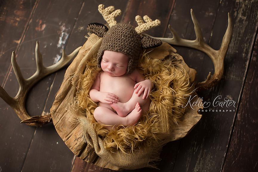 kellie carter somerset ky newborn photographer