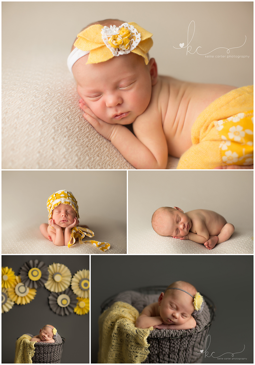 Lexington Kentucky Newborn Portrait Photographer