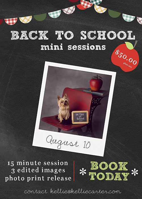 BackToSchool Back To School Mini Sessions