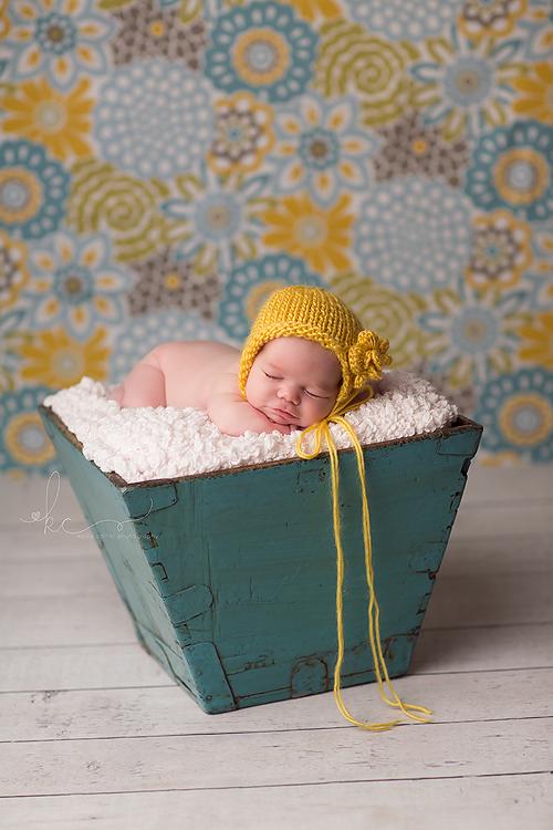Kellie Carter Newborn Photographer