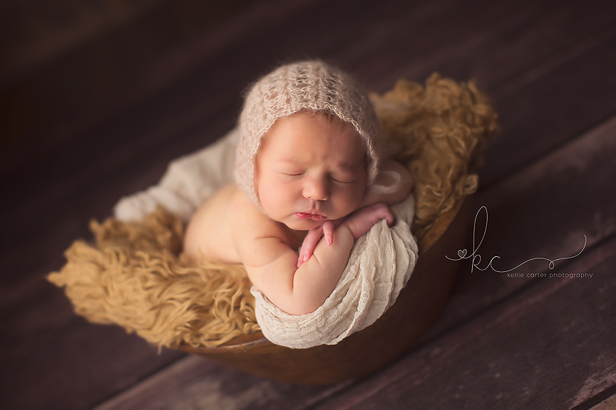 Kellie Carter KY Newborn Photographer